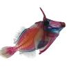 RIP Triggerfish