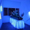 Love Motel for Insects: Khirki Experiment + Meet the Neighbors